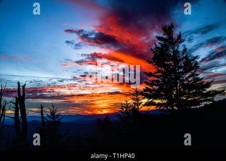 Spektakuläre Bergkette Ausblicke vom Clingmans Dome Bereich in der Great Smoky Mountains National Park, außerhalb Gatlinburg, Tennessee, USA. - Stockfoto