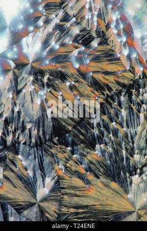 Dies ist Ascorbinsäure (Vitamin C) kristallisiert auf einer Glasplatte Mikroskop
