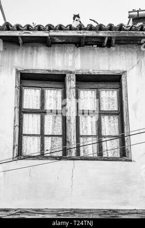 Bicolor Katze auf einem alten Haus Dach im Zentrum von Plovdiv, Bulgarien, architektonische Details, die Schwarz-Weiß-Fotografie - Stockfoto