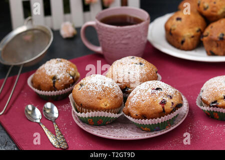 Schwarze Johannisbeere Muffins in einer Platte auf einem rosa Hintergrund close-up - Stockfoto