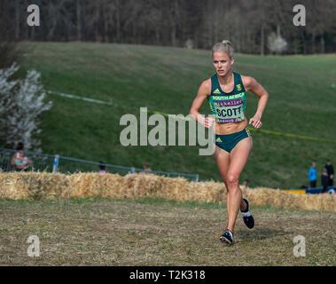Die älteren Frauen Rennen, IAAF World Cross Country Championships 2019 - Stockfoto
