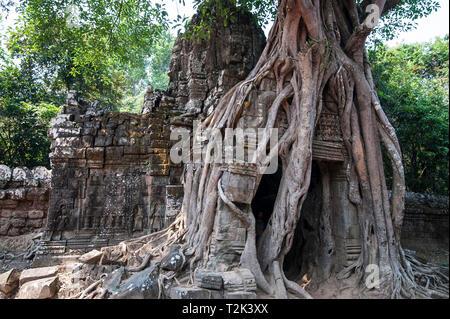 Kambodscha: Angkor Wat ist eine Tempelanlage in Kambodscha und eines der größten religiösen Bauwerke der Welt, auf einer Website messen 162,6 Hektar (1,62 - Stockfoto