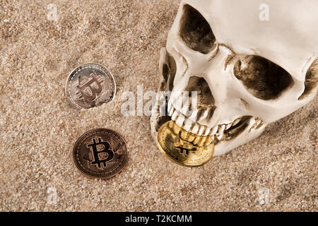 Nahaufnahme auf Schädel beißen Bitcoin über Sand Hintergrund. Konzept der Investitionen und der Schwankung der bitcoin und cryptocurrency. - Stockfoto