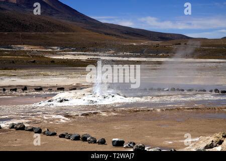 El Tatio Geysire in der Atacama-wüste, Chile: Breite geothermische Dampf Feld - Stockfoto