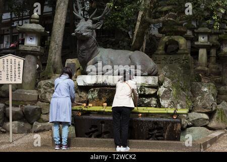 Zwei Touristen waschen ihre Hände als Teil einer Reinigung vor der Eingabe von Kasuga Taisha Shrine in Nara, Japan. - Stockfoto