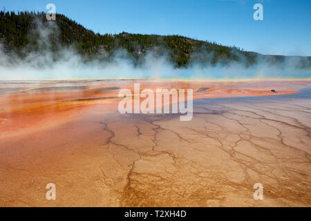 Grand Prismatic Spring im Yellowstone National Park - Stockfoto