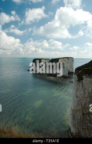 Old Harry Rocks, an der Küste von Dorset in Großbritannien. Im Hochformat - Stockfoto