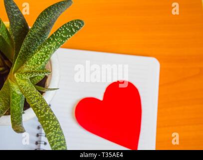 Flatlay, Blick von oben auf die saftigen, Unscharfer Fokus zu Notepad und das Herz, das Konzept der Tag der Erde, schützen das Herz in der Kardiologie, die Gesundheit Tag. - Stockfoto