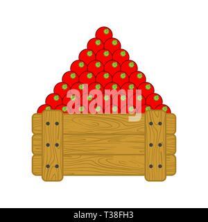 Tomaten im Holzkasten isoliert. Tomaten zum Verkauf auf dem Markt. Pflanzliche Cartoon Stil Vektor - Stockfoto