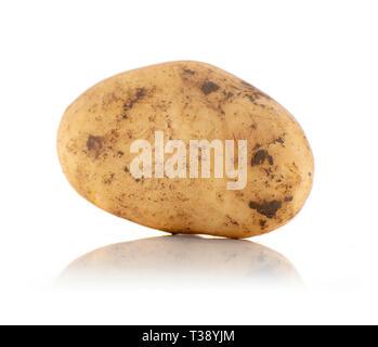 Frisch geerntete organischen Bodens Kartoffeln isoliert auf weißem Hintergrund - Stockfoto