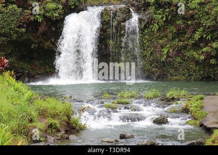 Einem rauschenden Wasserfall Kaskadierung über einen vulkanischen Hügel in einem Regenwald im Pua 'Ka' eine Strecke Park, in Haiku, Maui, Hawaii - Stockfoto