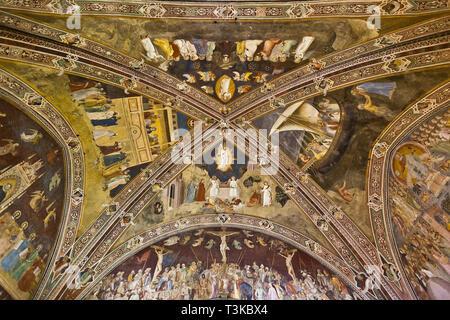 Decke der Spanischen Kapelle, Santa Maria Novella, Florenz - Stockfoto