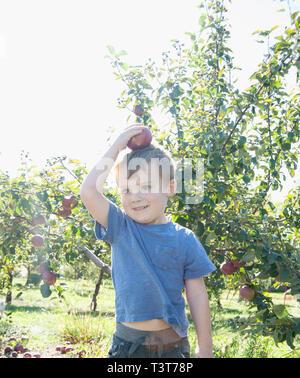 Junge Ausgleich Apfel auf den Kopf im Obstgarten - Stockfoto