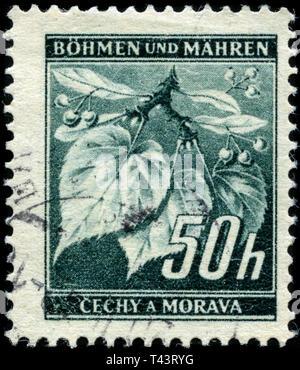 Briefmarke aus Böhmen und Mähren in der Lime Tree Branch (mit Obst) Serie 1940 ausgestellt - Stockfoto