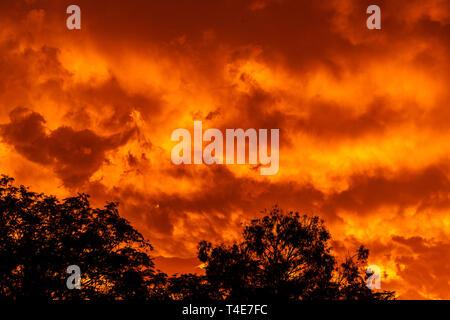 Wolken am Feuer der brennenden heißen roten Sonnenuntergang. - Stockfoto