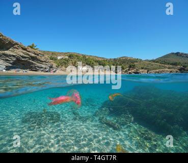 Spanien Mittelmeerküste mit Quallen Unterwasserwelt, Roses, Costa Brava, Katalonien, geteilte Ansicht Hälfte über und unter Wasser
