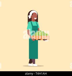 Frau Bauer Holding Box mit grüner Reife äpfel afrikanische amerikanische Frau ernten Früchte landwirtschaftliche Arbeitnehmer ökologische Landwirtschaft Konzept Flachbild in voller Länge - Stockfoto