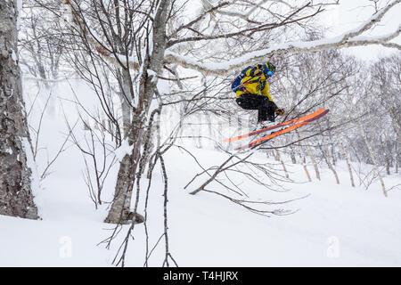 Mann backcountry Skiing Niseko Mountain springt durch dichten Bäumen im tiefen Schnee. Skifahren Norden Japans in Hokkaido. - Stockfoto