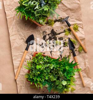 Pflanzen der Transplantation. Gartengeräte für das Handwerk Papier - Stockfoto