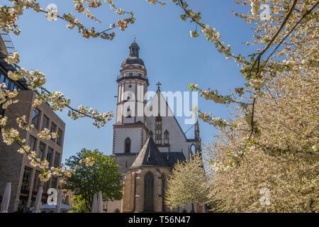St. Thomas Kirche in Leipzig. - Stockfoto