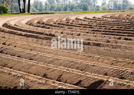 Blick auf gepflügten Acker bebaut mit symmetrisch geschwungene Furchen in den Niederlanden in der Nähe von Roermond. - Stockfoto