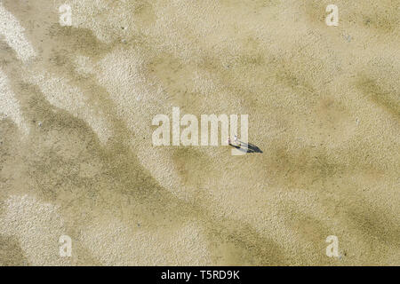Ansicht von oben, Luftaufnahme von ein paar Touristen, Hand in Hand, Fuß auf einer Fläche von Sand bei Ebbe. Phuket, Thailand. - Stockfoto
