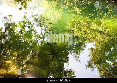 Krka, Sibenik, Kroatien, Europa - Licht Reflexion über den Fluss Krka National Park - Stockfoto