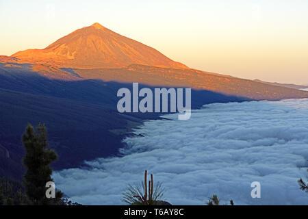 Vulkan Pico del Teide, Teide-Nationalpark, Parque Nacional de las Cañadas del Teide, Teneriffa - Stockfoto