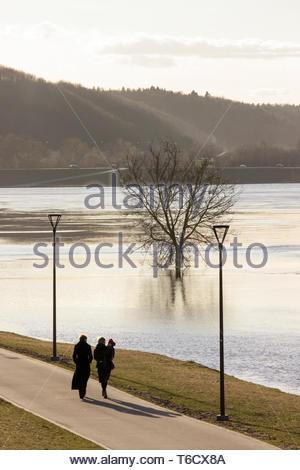 Sonnig, Scenic, Winterlandschaft, mit einem einsamen, Leavesless Baum in einem Schwamm Wasser, einige Menschen zu Fuß am Ufer des Flusses, und einen Hügel - Stockfoto