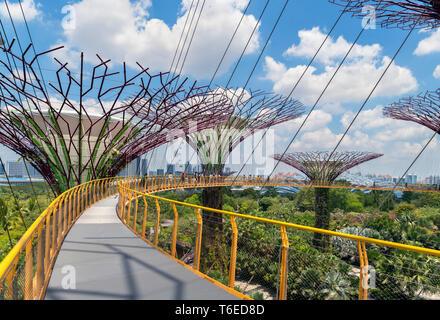 Die ocbc Skyway, eine Antenne Gehweg in der Supertree Grove, Gärten an der Bucht, Singapore City, Singapur