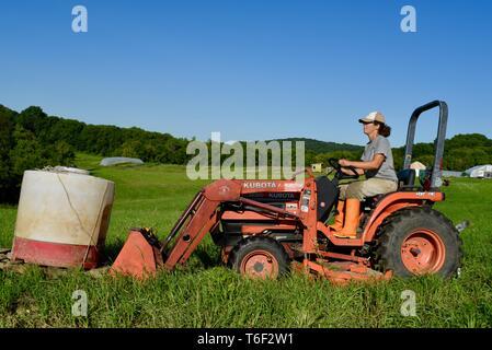 Hart arbeitende Frau Frau Bauer, am schnellsten wachsenden Gruppe von Landwirten, die die bewegten Wasser für Schweine Tiere mit Kubota Traktor, Decorah, Iowa, USA - Stockfoto