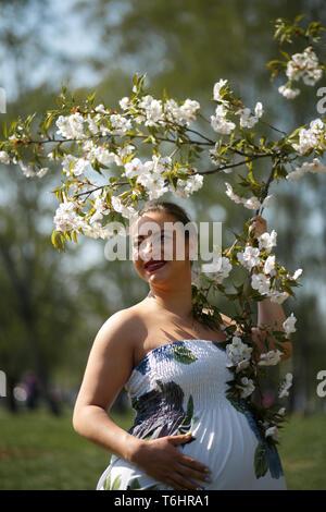 Glückliche junge bald Mutter Mamma zu sein - Junge Reisende schwangere Frau genießt ihre Freizeit Freizeit in einem Park mit blühenden sakura Kirschblüte Tragen eines - Stockfoto