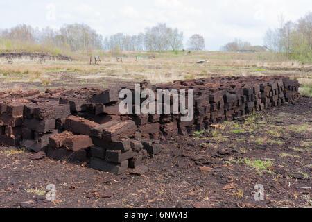 Torf Graben im niederländischen Landschaft im ländlichen Raum - Stockfoto