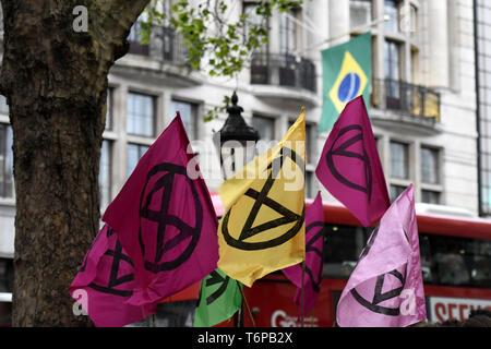 London, Greater London, UK. Mai, 2019. Aussterben Rebellion Fahnen und brasilianische Flagge im Hintergrund sind während des Protestes außerhalb der Brasilianischen Botschaft in London gesehen. Aussterben Rebellion Aktivisten versammelten sich vor Brasilien Botschaft in London die Artenvielfalt der Amazonas Regenwald und Nachfrage der Regenwald Ausbeutung zu beenden und sie zu schützen, zu feiern. Quelle: Andres Pantoja/SOPA Images/ZUMA Draht/Alamy leben Nachrichten - Stockfoto