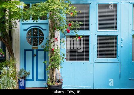 Blaues Haus und rote Rosen in Bathurst Mews, Hyde Park, Bayswater, London, England - Stockfoto
