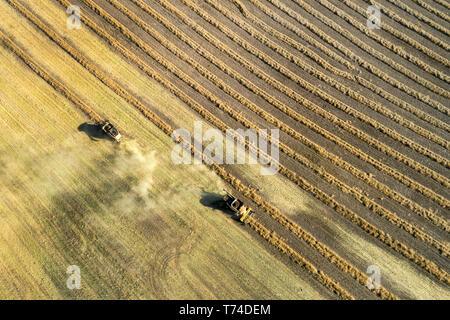 Luftbild von oben auf den zwei Mähdrescher ernten Reihen von cut Raps, westlich von Beiseker, Alberta, Kanada - Stockfoto