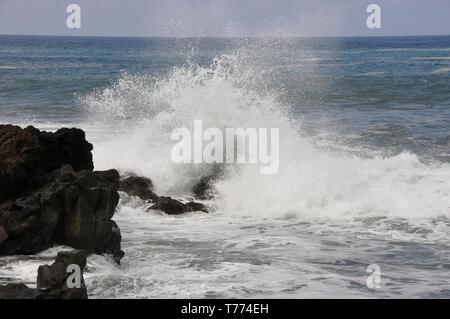 Direkt am Meer in Puerto de la Cruz, Teneriffa, Kanarische Inseln, Spanien - Stockfoto