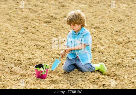Junge sitzen auf dem Boden pflanzen Blume im Feld. Spaß auf dem Bauernhof. Gartenarbeit Konzept. Kind Spaß mit kleinen Schaufel und Pflanze im Topf. Pflanzung in das Feld ein. Setzlinge gepflanzt. Kleine Helfer im Garten. - Stockfoto
