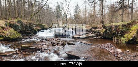Panoramablick von Pont Cwmfedwen Wasserfall am frühen Frühling in Brecon Beacons, Wales, Großbritannien - Stockfoto