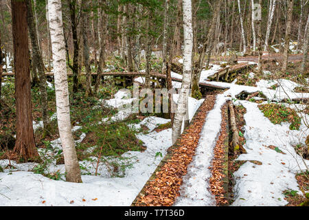 Mountain Trail mit Schnee im Okuhida Dörfer Shinhotaka Seilbahn in der Präfektur Gifu, Japan Park im Grünen Frühling Tag - Stockfoto