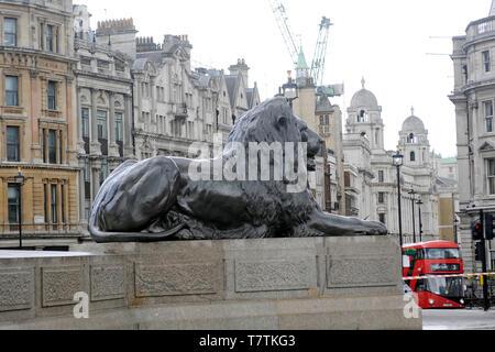 London, Großbritannien. 09 Mai, 2019. Die weltberühmten Löwen in Trafalgar Square einen Druck cleam erhalten. Credit: JOHNNY ARMSTEAD/Alamy leben Nachrichten - Stockfoto