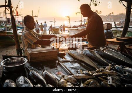 Fischmarkt in der Morgendämmerung, Galle, Südküste, Sri Lanka, Asien - Stockfoto