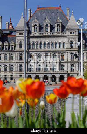 Das New York State Capitol Building, 1867-1899, Albany. S.h. Richardson war die dominante Architekt von mehreren. - Stockfoto