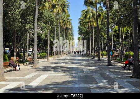Die malerische, von Bäumen gesäumten Avenida Frederico Garcia Lorca in Almeria, Almeria, Spanien, die zum Hafen führt. - Stockfoto