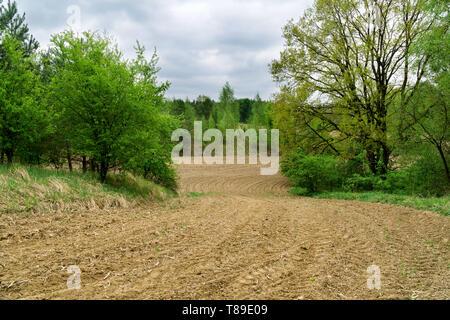 Ländliche frühling landschaft in Polen. Frisch gepflügten Feldes, Furchen, grüne Blätter in den Bäumen, Wald im Hintergrund, bewölkter Himmel. - Stockfoto