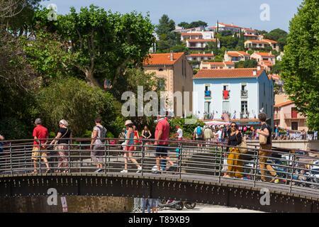 Frankreich, östliche Pyrenäen, Cote Vermeille, Collioure - Stockfoto