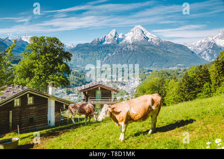 Schöne Panoramasicht auf idyllischen Berglandschaft mit traditionellen Mountain Chalets und Kuh weiden auf grünen Wiesen an einem schönen sonnigen Tag mit Bl - Stockfoto