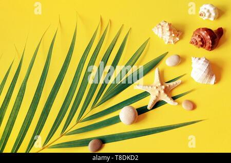 Sommer vibes. Tropische palm leaf, Muscheln und Seesterne. Flach, Ansicht von oben. Gelber Hintergrund - Stockfoto