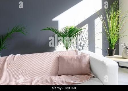 Bequemes Sofa mit tropischen Blättern im Wohnzimmer - Stockfoto