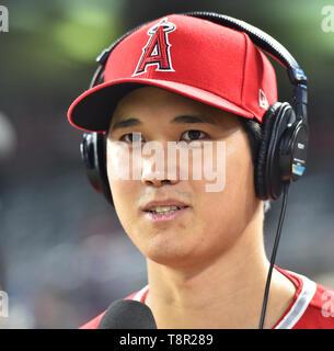 Los Angeles Angels' Designated Hitter Shohei Ohtani ist nach dem Gewinn der Major League Baseball Spiel gegen die Minnesota Twins im Oriole Park an Zielfeld in Minneapolis, Minnesota, USA, 13. Mai 2019 interviewt. Quelle: LBA/Alamy leben Nachrichten - Stockfoto